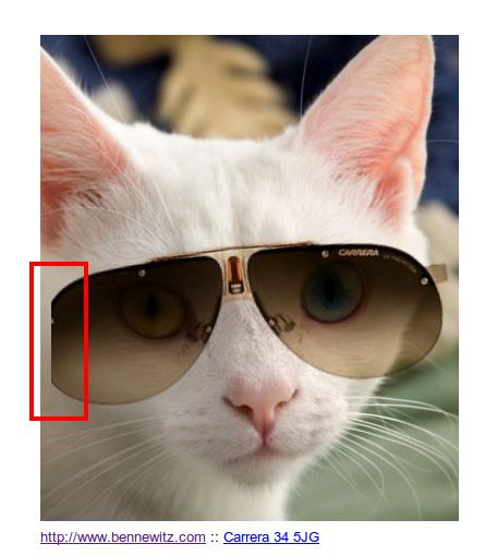 Virtual Mirror snapshot, showing the bug