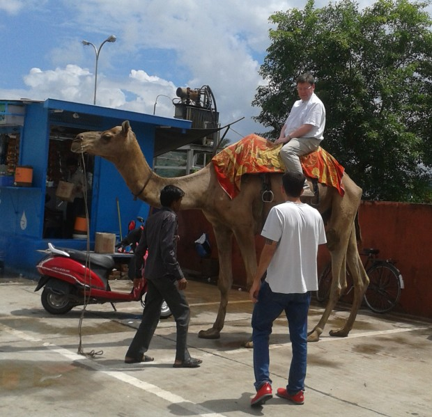 The camel and me